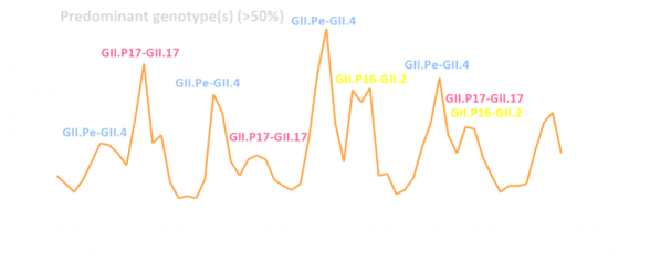 Monthly Epidemic Curve (for website)
